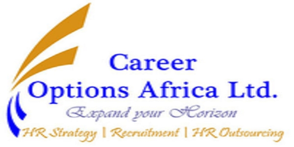 3 JOB POSITIONS AT Career Options Africa Ltd : ( Deadline : 07 - 10  April 2019 )