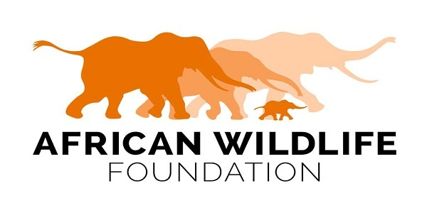 JOB AT African Wildlife Foundation : Program Coordinator : ( Deadline : 17 May 2019 )