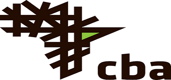 2 JOB POSITIONS AT Commercial Bank of Africa (CBA)  : ( Deadline : 05 June 2019 )