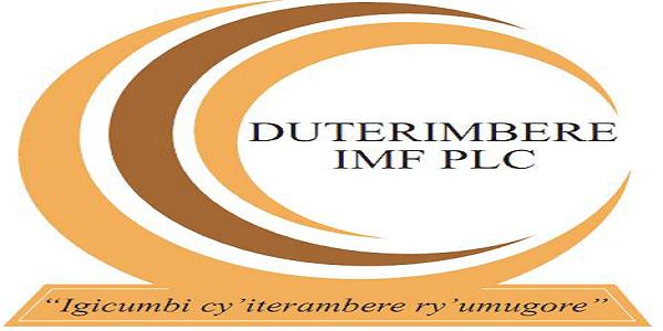 JOB AT DUTERIMBERE IMF PLC : Chief Business Development Officer (CBDO) : ( Deadline : 10 July 2019 )