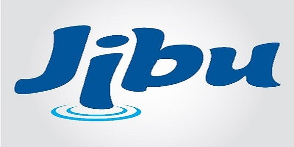 2 JOB POSITIONS AT Jibu  : ( Deadline : 01 May 2019  )