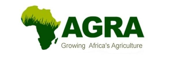 Associate Program Officer at Alliance for a Green Revolution in Africa (AGRA): (Deadline 7 August 2020)