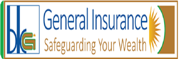 JOB AT BK General Insurance Company Limited : IT SECURITY OFFICER : ( Deadline : 17 May 2019  )