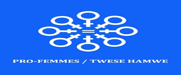 4 Positions of PRO-FEMMES/TWESE HAMWE (PFTH): (Deadline 23 October 2020)