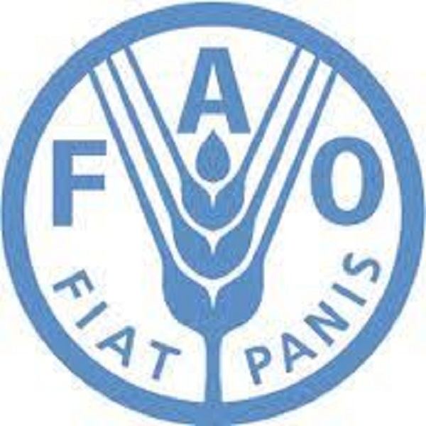 Senior value-chain expert to assess climate risks and shocks on food systems in Kigali city region at FAO Rwanda: (Deadline 14 October 2020)