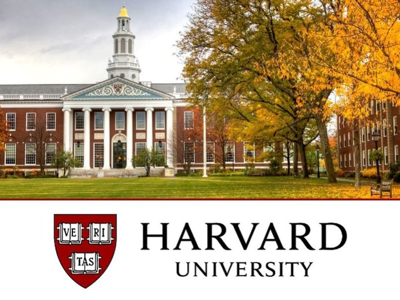 Professional Certificate in Computer Science for Web Programming at Harvard University: (Deadline Ongoing)
