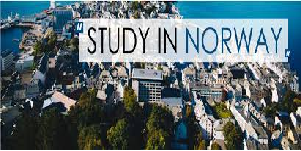 Study in Norway: Bachelor International Scholarships 2020 ...