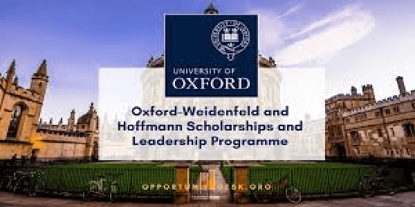 Study in UK : Bachelor's and Master's Studies through The Weidenfeld-Hoffmann Scholarships and Leadership Programme for international students. Deadline 01/24/2020