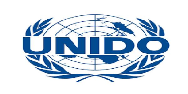 Project Assistant at United Nations Industrial Development Organization (UNIDO), Uganda