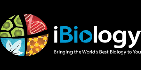 iBiology Young Scientist Seminars (YSS) 2020 Competition (all-expenses paid trip to the University of California, San Francisco, USA). Deadline: December 16, 2019