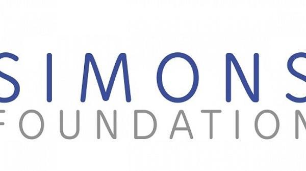 IMU–Simons African Fellowship Program : ( Deadline : 15 January 2020)