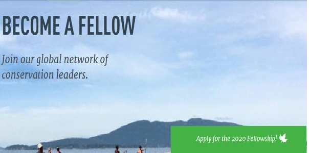 Kinship Conservation Fellows Program 2020 for Conservationists ( $6000 stipend and a month of valuable training), Deadline : 12 January 2020