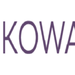 Sokowatch Ltd