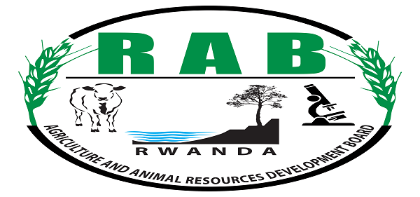 6 JOB POSITIONS AT RWANDA AGRICULTURE AND ANIMAL RESOURCES DEVELOPMENT BOARD : ( Deadline : 13 December 2019 )