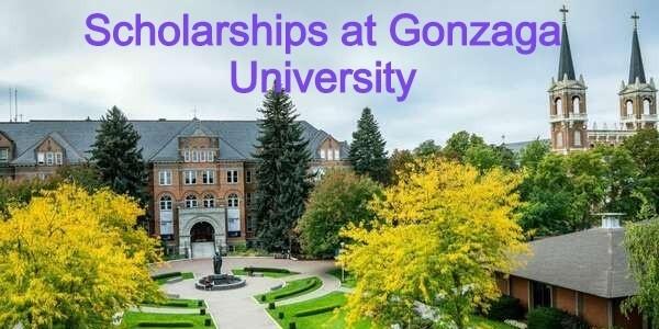Chester Chastek Scholarship at Gonzaga University in the USA: (Deadline 30 November 2020)