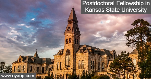 Postdoctoral Fellowship in Kansas State University in the United States: (Deadline 30 September 2020)