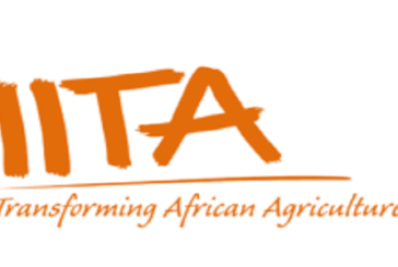 IITA RWANDA competitive call for MSc thesis research for students from the University of Rwanda 2020-2021: (Deadline 30 September 2020)