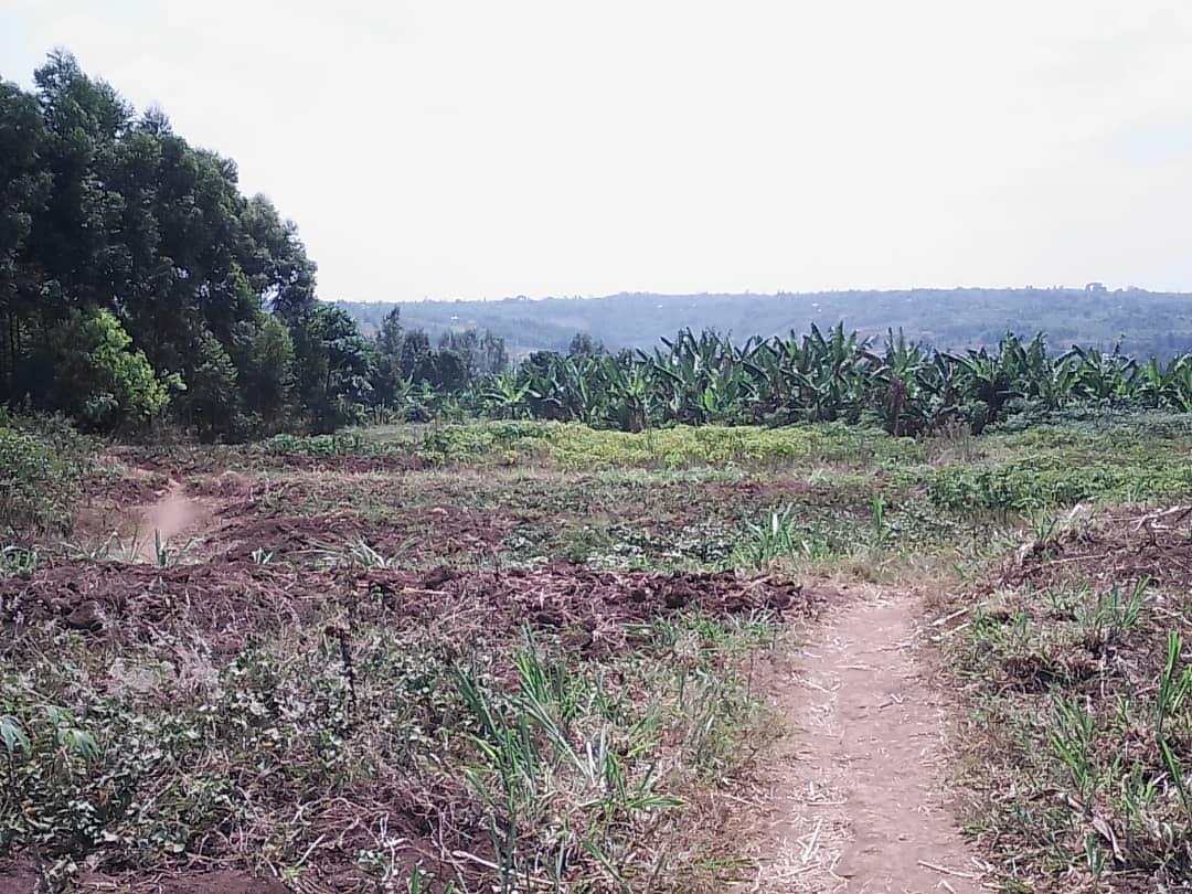 Ibibanza(15) byiza byamakeya biherereye Rwamagana - Munyiginyi hafi n'ibikorwa remezo
