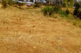 Ikibanza Kigurishwa  480,000Frw