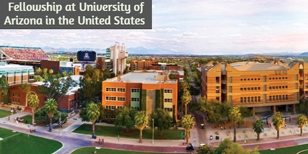 Immigrant Legal Services Fellowship at University of Arizona in the United States: (Deadline 30 September 2020)