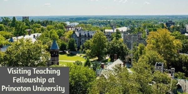 Visiting Teaching Fellowship at Princeton University: (Deadline 31 October 2020)