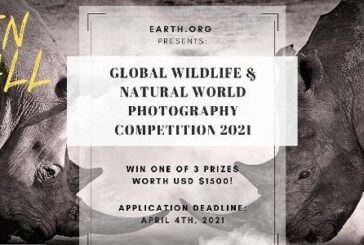 Earth.Org Global Wildlife & Natural World Photography Competition 2021: (Deadline 25 April 2021)