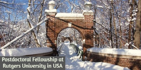 Postdoctoral Fellowship at Rutgers University in the United States: (Deadline Ongoing)