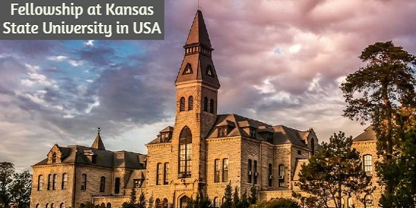 Fellowship at Kansas State University in the United States: (Deadline 30 November 2020)