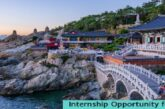 Internship Opportunity for Information Systems & Communication Technology in Korea  Internships: (Deadline 30 December 2020)