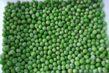 Green Peans Price: 1500 Rwf Delivery Fees: 1000 Rwf