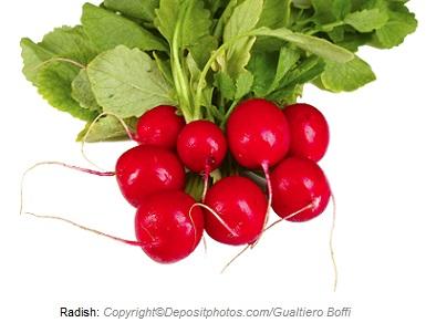 Radish Rouge/ Radi Price: 2000 Rwf / Kg Delivery Fees: 1000 Rwf