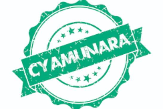 Itangazo rya cyamunara y'inzu iri mu kibanza gifite UPI 1/03/10/03/133 giherereye Kicukiro/Nyarugunga: (Deadline: 25 September )
