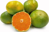 Mandarine Price: 2000 Rwf/Kg Delivery Fees: 1000 Rwf