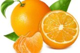 Orange Fruit Price: 600 Rwf/pc Delivery Fees: 1000 Rwf