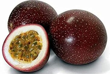 Passion Fruits Price: 1500 Rwf / Kg Delivery Fees: 1000 Rwf