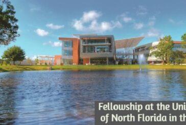 Fellowship at the University of North Florida: (Deadline 30 November 2020)