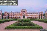 Wortham Fellowship at Rice University in the United States: (Deadline	30 November 2020)