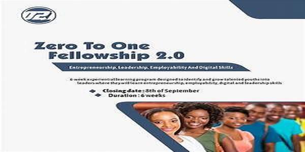Call for Applications: ZeroToOne High Impact Leaders Fellowship 2020: (Deadline 9 November 2020)