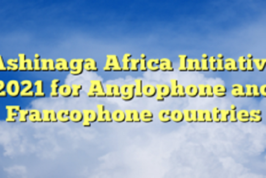 Ashinaga Africa Initiative 2021 for Anglophone and Francophone countries: (Deadline 28 February 2021)