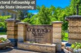 Postdoctoral Fellowship at Colorado State University: (Deadline 15 November 2020)