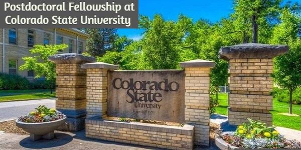 Postdoctoral Fellowship at Colorado State University: (Deadline 15 November 2020)