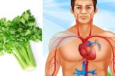 Imbaraga 10 za Celery; Uruboga rukora ibitangaza ku mubiri w'umuntu