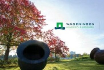 Wageningen University Africa Scholarship Programme 2021/2022 for African Students: (Deadline 1 February 2021)
