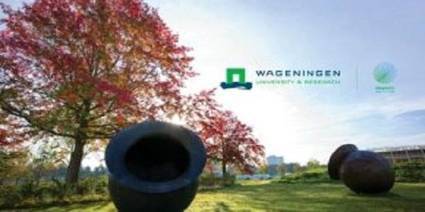 Wageningen University Africa Scholarship Programme 2021/2022 for African Students: (Deadline 1 February 2021)