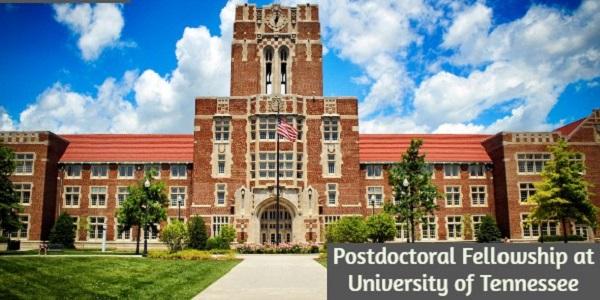 Postdoctoral Fellowship at University of Tennessee: (Deadline 19 January 2021)
