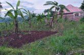 Ikibanza cyiza kinini muri RWAMAGANA-MWURIRE; Price: 20M