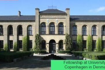 Fellowship at University of Copenhagen in Denmark: (Deadline 20 February 2021)
