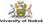 University of Nairobi Research and Innovation Fellowship 2021: (Deadline 22 January 2021)