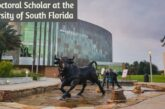 Postdoctoral Scholar at the University of South Florida: (Deadline 22 February 2021)