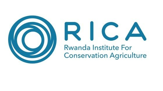 Agricultural Economics Lecturer at Rwanda Institute for Conservation Agriculture: (Deadline: 15 February 2021)